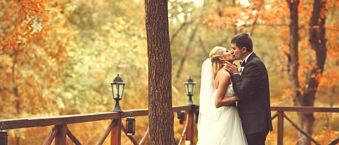 Beso, parque, otoño, boda, novios